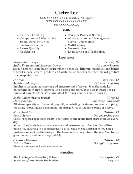 Audio Engineer and Business Owner resume template Nevada
