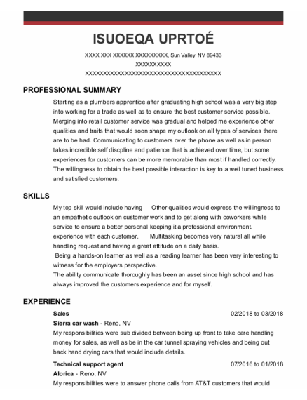 Sales resume example Nevada