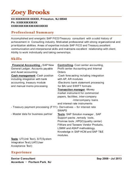 Senior Consultant resume example New Jersey