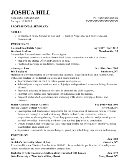 Licensed Real Estate Agent resume template New Jersey