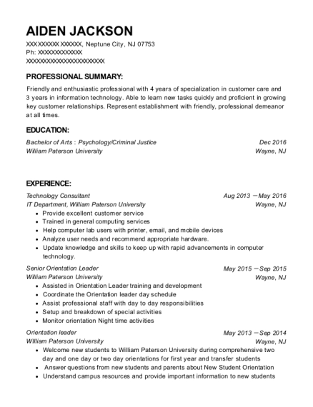 Technology Consultant resume sample New Jersey
