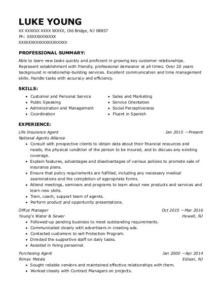 Life Insurance Agent resume sample New Jersey