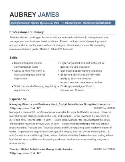 Managing Director and Business Head resume example New Jersey