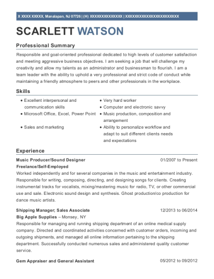 Music Producer resume template New Jersey