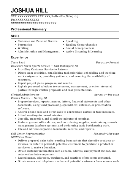 Team Lead resume example New Jersey