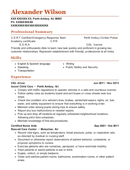 CDL driver resume sample New Jersey