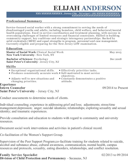 Intern Counselor resume example New Jersey