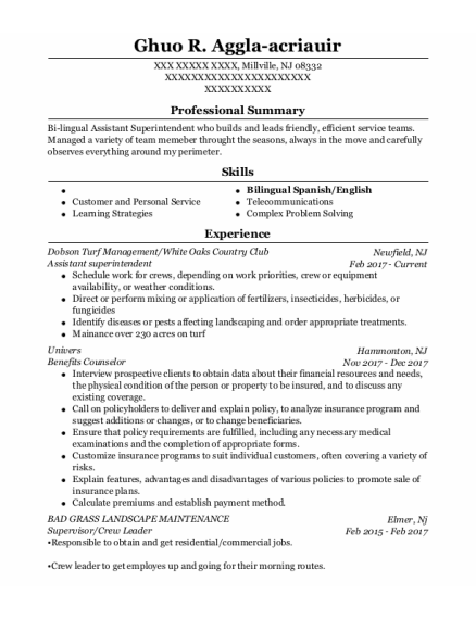 Assistant Superintendent resume template New Jersey