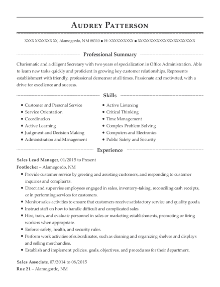 Sales Lead Manager resume template New Mexico