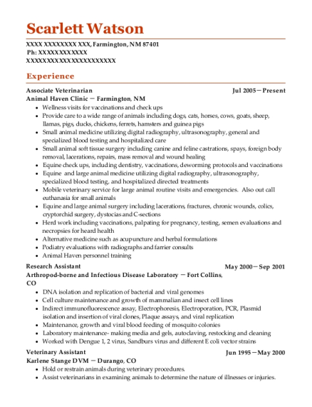Associate Veterinarian resume format New Mexico
