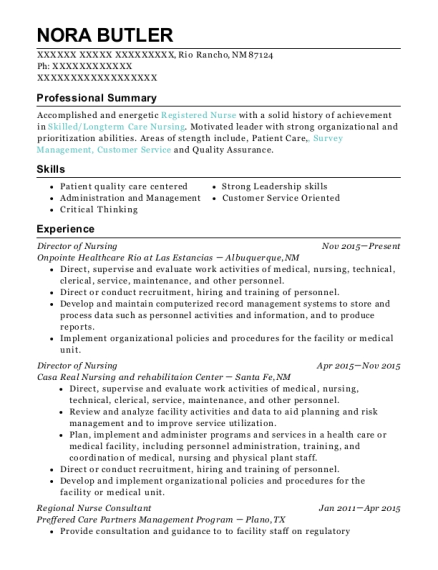 Director of Nursing resume template New Mexico