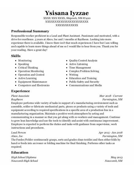 Lead Person resume format New Mexico