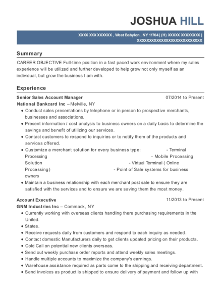 Senior Sales Account Manager resume template New York