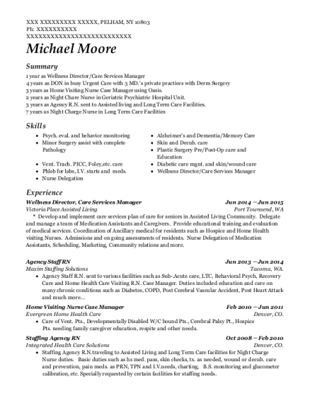 Wellness Director resume example New York