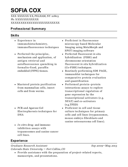 Graduate Research Assistant resume sample New York