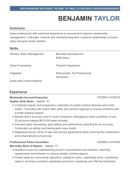 Multimedia Account Executive resume template New York