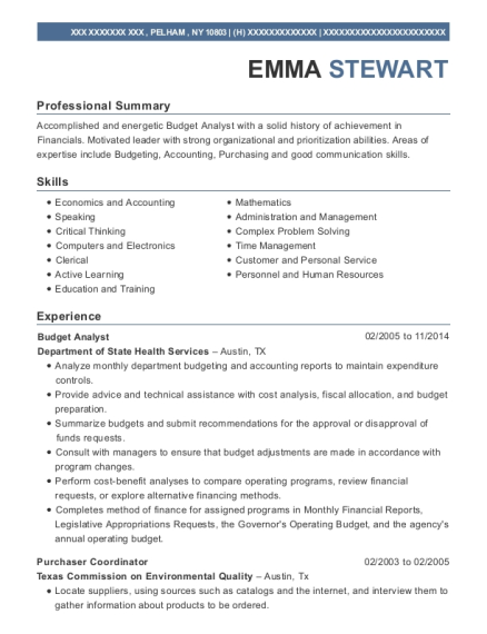 Budget Analyst resume template New York