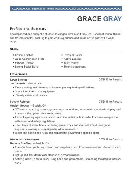 Lawn Service resume template New York
