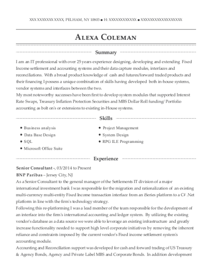 Senior Consultant resume format New York