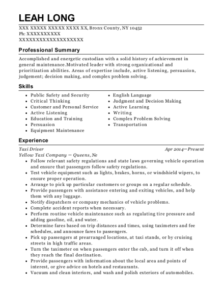 Taxi Driver resume template New York