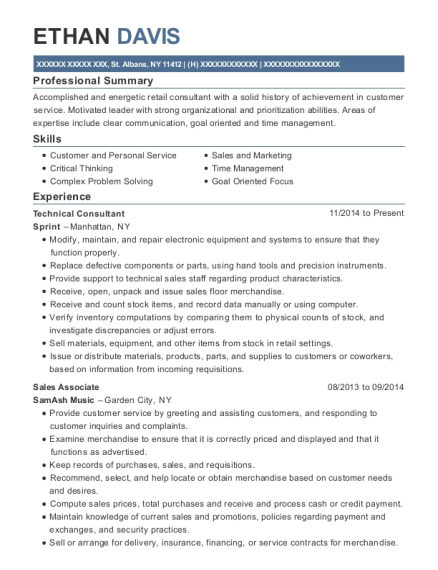 Technical Consultant resume sample New York