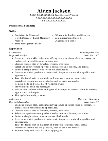 Esthetician resume template New York