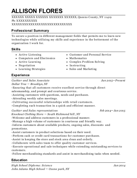 Cashier and Sales Associate resume template New York