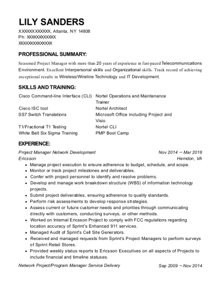 Project Manager Network Development resume example New York