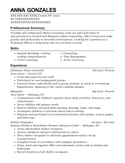 Substance Abuse Counselor resume format New York