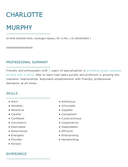 Customer Service Assistant resume example New York