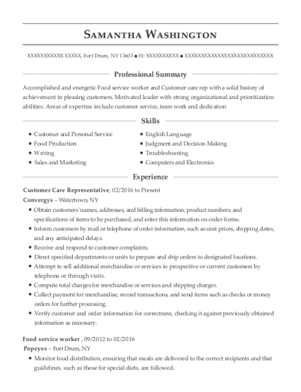 Customer Care Representative resume template New York