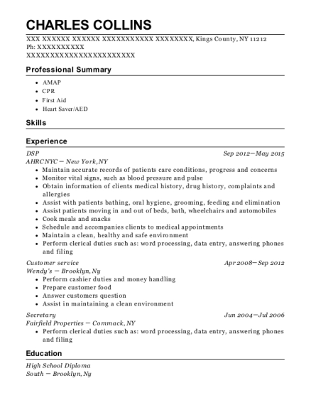 DSP resume template New York