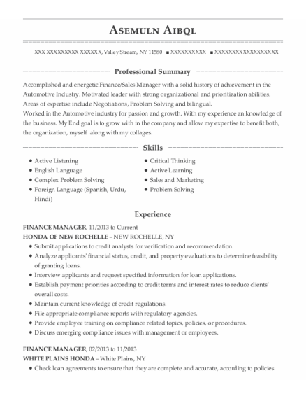 Finance Manager resume example New York