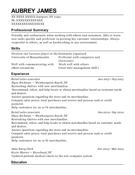 Retail Sales Associate resume template New York