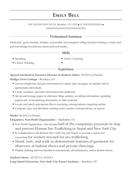 Special Assistant to Executive Director of Student Affairs resume template New York