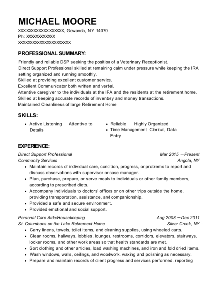 Direct Support Professional resume example New York