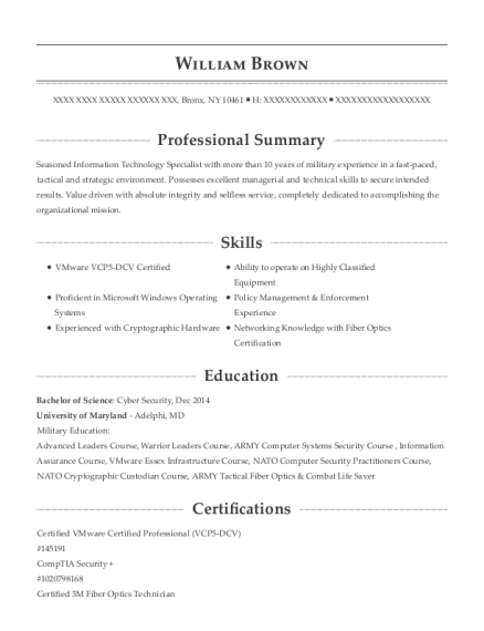Lead Systems Administrator resume template New York