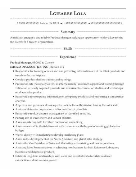 Product Manager resume example New York