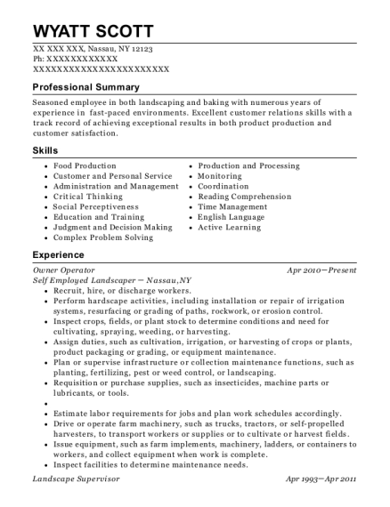 Owner Operator resume sample New York