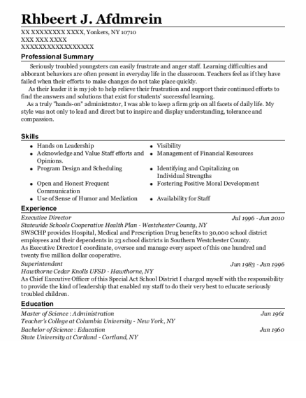 Executive Director resume sample New York