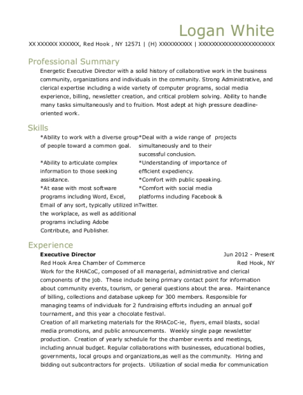 Executive Director resume format New York