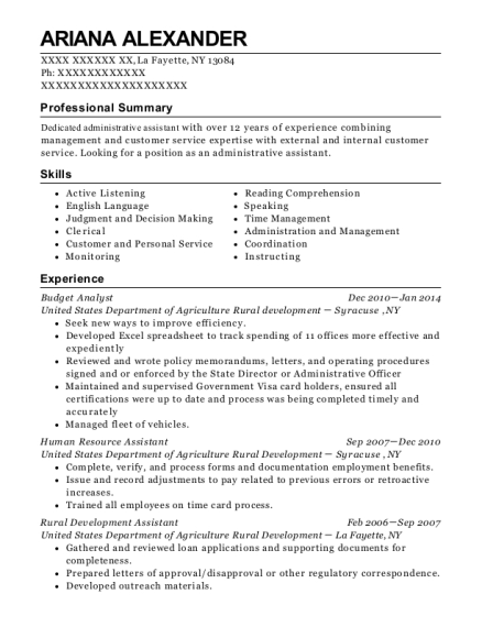 Budget Analyst resume format New York