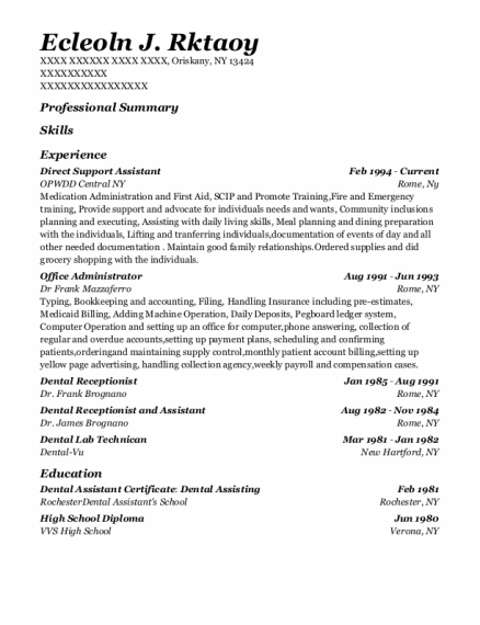 Direct Support Assistant resume example New York