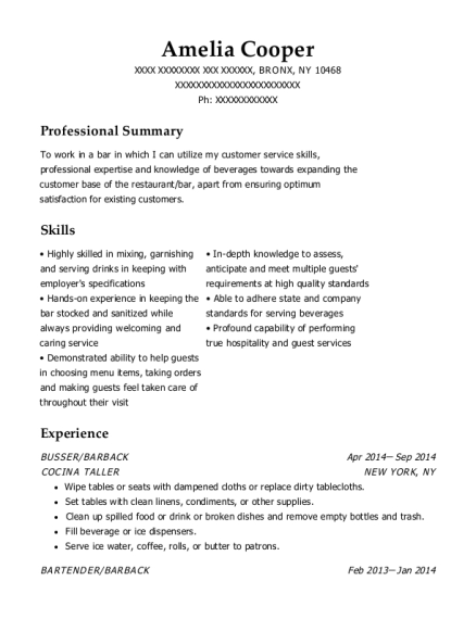BUSSER resume template New York