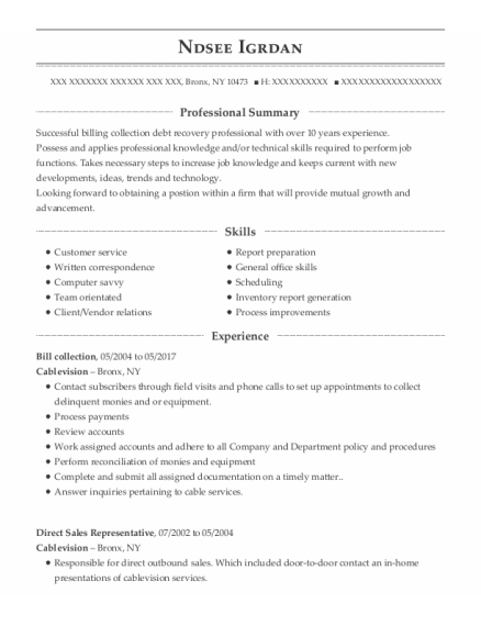 Direct Sales Representative resume example New York