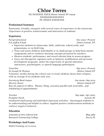 Paraprofessional resume template New York