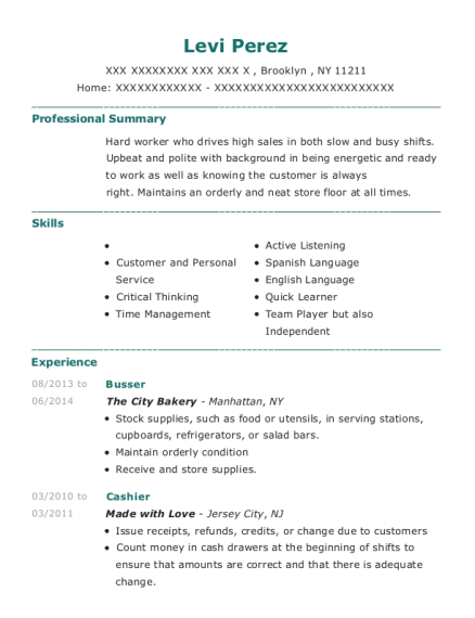 Busser resume example New York