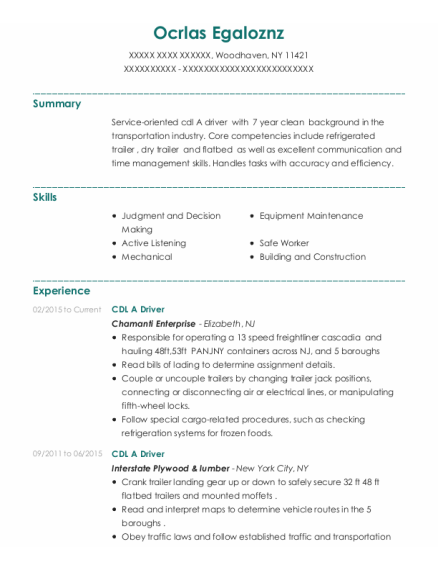 Cdl A Driver resume example New York