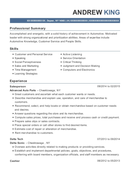 Salesperson resume template New York