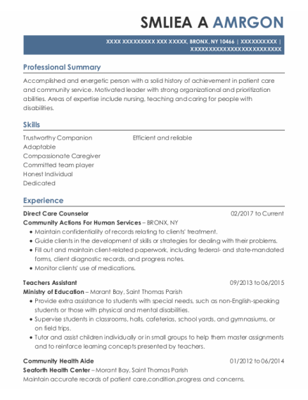 Direct Care Counselor resume example New York